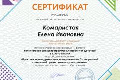 Сертификат Комаристая Е.И.